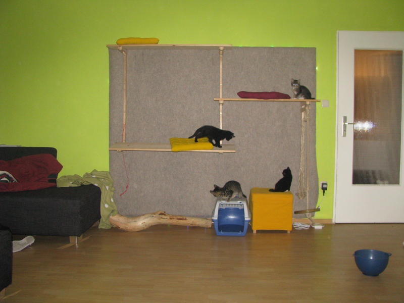 zubeh r kratzm bel co katzenwand. Black Bedroom Furniture Sets. Home Design Ideas