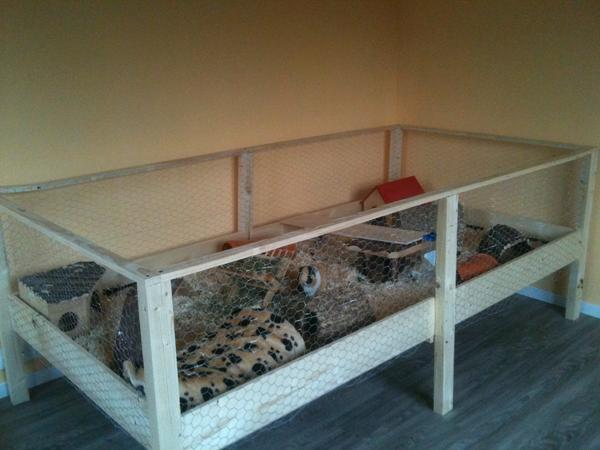 mein neuer eigenbau meerschweinchen haltung. Black Bedroom Furniture Sets. Home Design Ideas