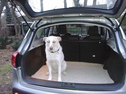 hund im auto unterbringen reisen mit hund hundeforum. Black Bedroom Furniture Sets. Home Design Ideas