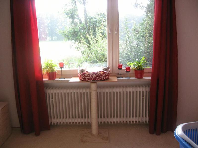 fensterbankauflage kratz kombi katzen forum. Black Bedroom Furniture Sets. Home Design Ideas