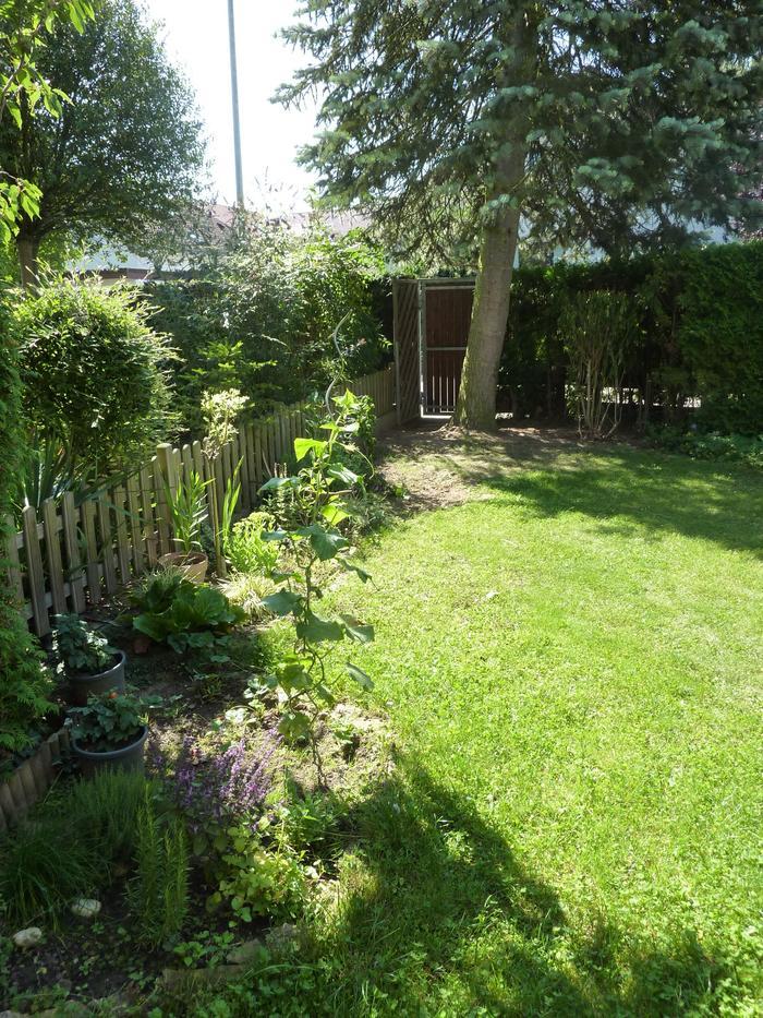 Reihenmittelhausgarten wie gestalten seite 1 for Gartengestaltung thuja