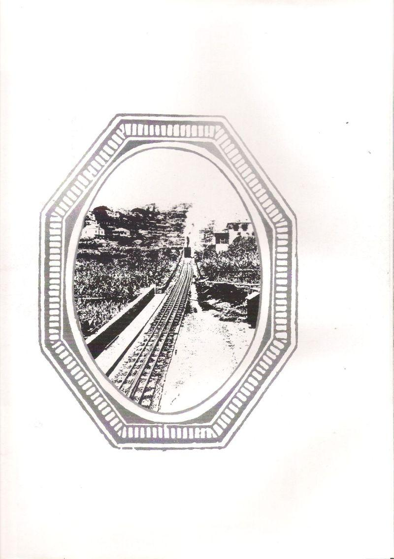 Zahnradbahn auf Madeira 8053914hku