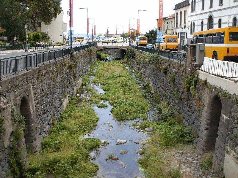 Zahnradbahn auf Madeira 8054379vxr