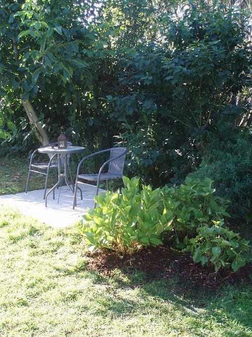 ltere hortensie umpflanzen seite 1 gartenpraxis. Black Bedroom Furniture Sets. Home Design Ideas