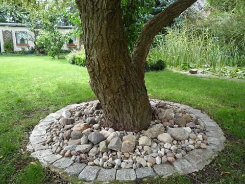 beet mit kies gestalten – tiedweb, Garten und erstellen