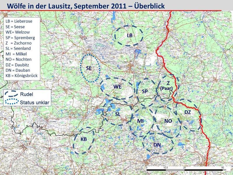 Wölfe In Brandenburg Karte.Wölfe In Sachsen Anhalt Karte Hanzeontwerpfabriek