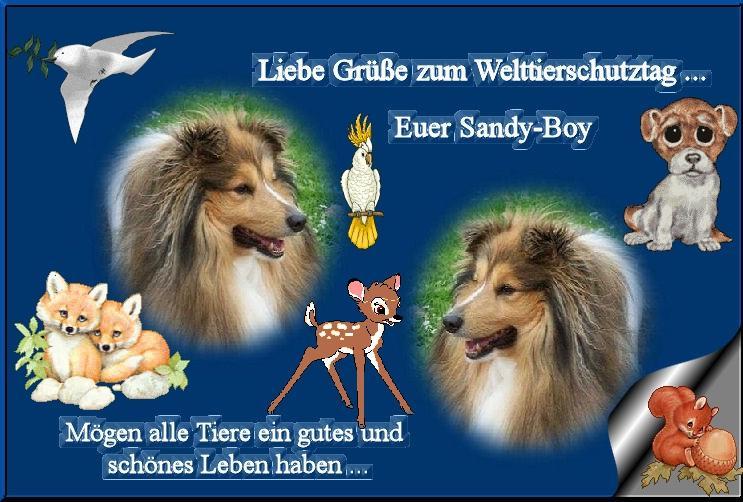 An den Beitrag angehängtes Bild: http://up.picr.de/8351787qpb.jpg