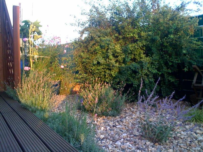 gartengestaltung mit kiesbeeten – spinjo, Gartenarbeit ideen