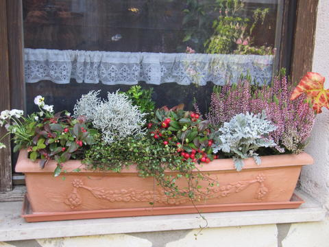 Was Planzt Ihr Im Herbst Mein Schöner Garten Forum