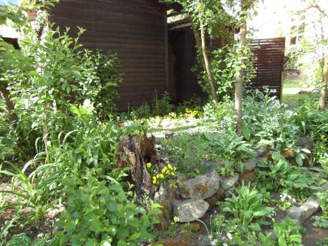 Total Verwilderter Garten Mein Schöner Garten Forum