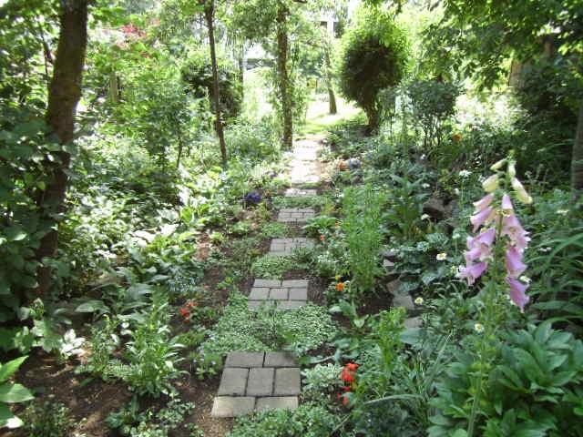 Total Verwilderter Garten Page 2 Mein Schöner Garten Forum