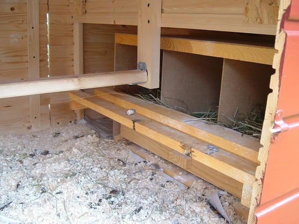 4 kubik h hnerhaus welche abmessungen seite 2. Black Bedroom Furniture Sets. Home Design Ideas