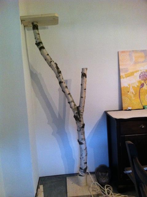 projekt eigenbau wir bauen uns einen naturkratzbaum katzen forum. Black Bedroom Furniture Sets. Home Design Ideas