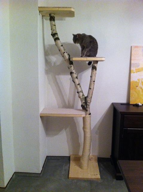 projekt eigenbau wir bauen uns einen naturkratzbaum. Black Bedroom Furniture Sets. Home Design Ideas