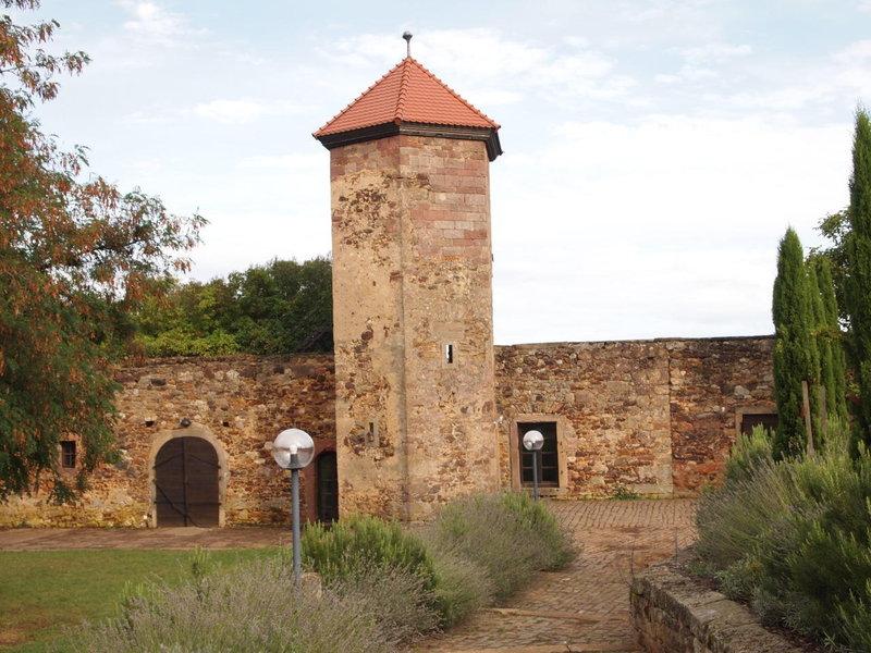 Burgen und Schlösser | Kreis Bad Dürkheim | Kreis Bad Dürkheim