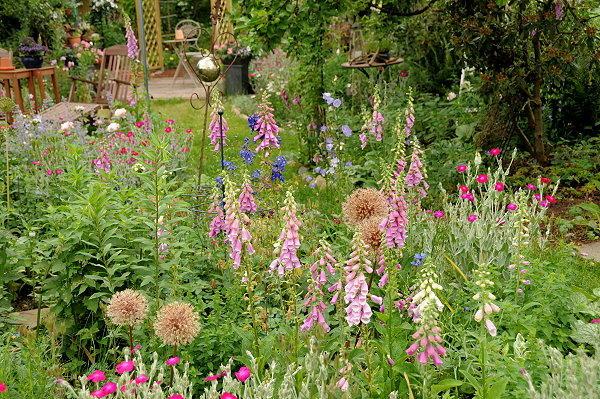 cottage garten pflanzen – msglocal, Hause und garten