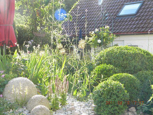 Kiesgarten gravel garden - Kiesgarten bepflanzung ...