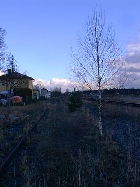 Bahnhof Buch (KBS Simbach - München Hbf) 9862797fzl