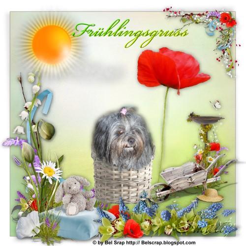 An den Beitrag angehängtes Bild: http://up.picr.de/9971730lsd.jpg
