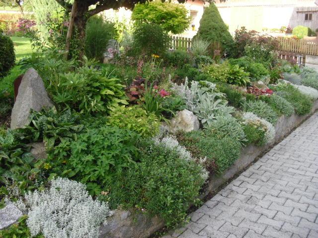 hangbepflanzung mein schoener garten forum