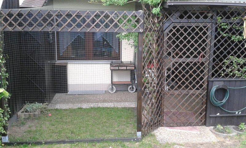 Bevorzugt Terrasse katzensicher machen - Katzen Forum QE79
