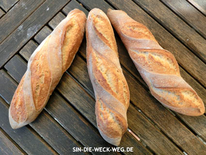 Nachgebacken – Brotstangen mit Madre (LM)
