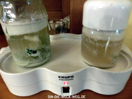 Experiment: Joghurt mit Mandelmilch aus Kornelkirschen