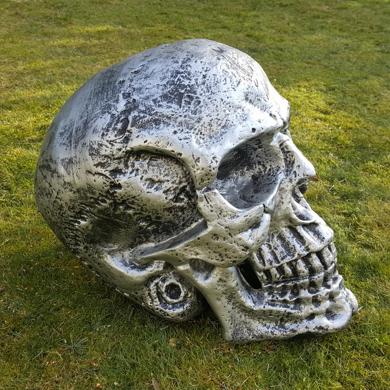 totenkopf deko figur skull sch del gothic horror statue halloween fantasy xxl ebay. Black Bedroom Furniture Sets. Home Design Ideas