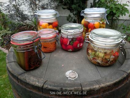 E bissel fermentiert… Rhabarber und mehr