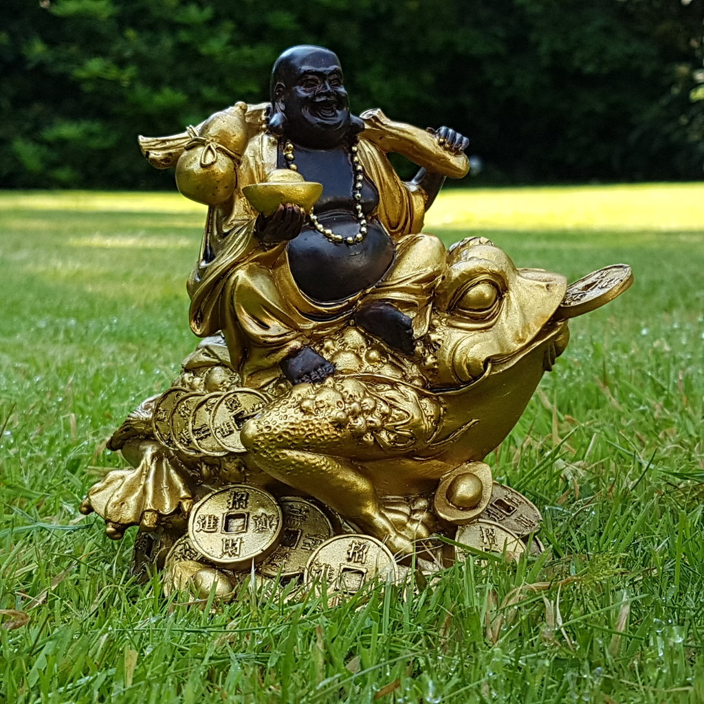 happy buddha auf frosch deko figur feng shui statue budda on frog joga gl ck ebay. Black Bedroom Furniture Sets. Home Design Ideas