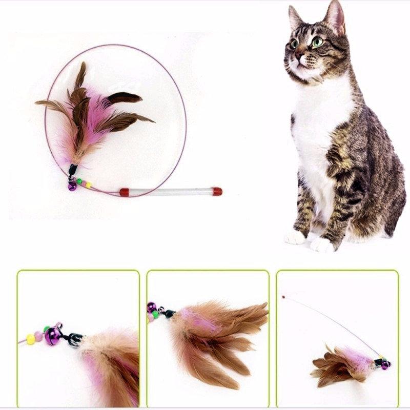 Katze Spielangel Spiel Angel Draht Cat Dancer Feather Dancer extra ...