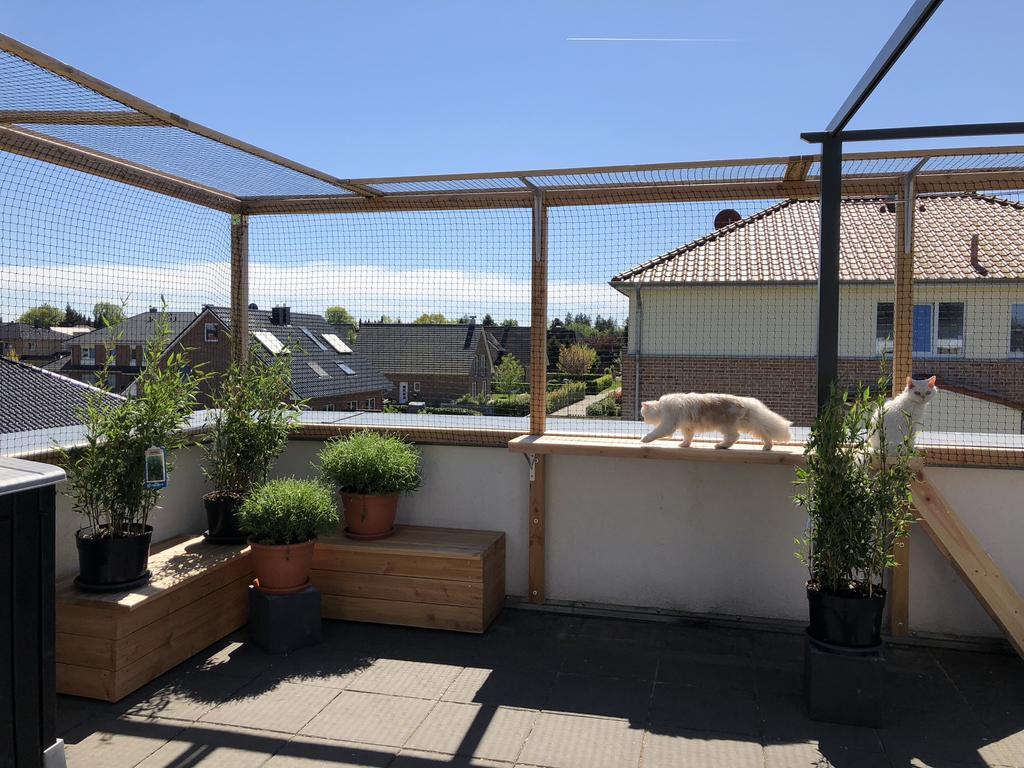 Bevorzugt Dachterrasse erfolgreich gesichert-zufrieden! ZK88