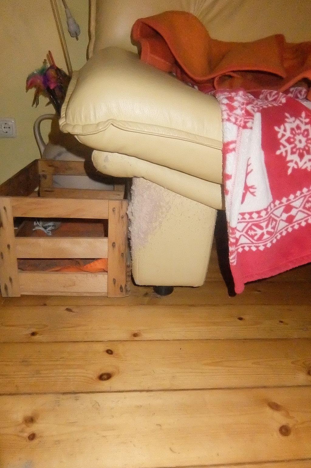 kratzm glichkeiten bieten wie viel katzen forum. Black Bedroom Furniture Sets. Home Design Ideas