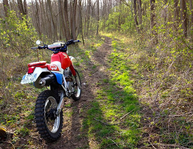 Honda 600 XR - Page 3 34597990za