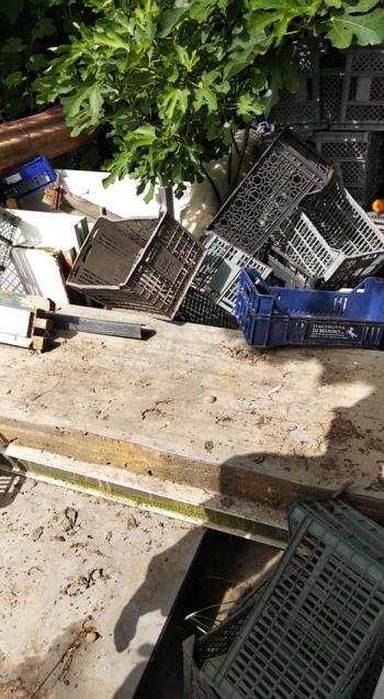 Bildertagebuch - Aliya wurde unter einem Müllhaufen geboren - VERMITTELT - 35020366ia
