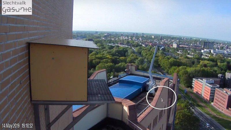 Groningen/Gasunie 2019 - Pagina 18 35754329kp