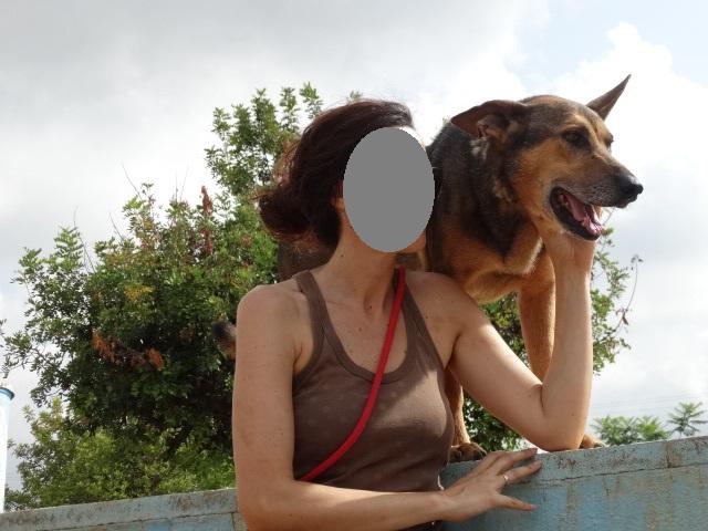 Bildertagebuch - PUPI möchte endlich auf der Sonnenseite des Lebens stehen - VERMITTELT - 36421887bg