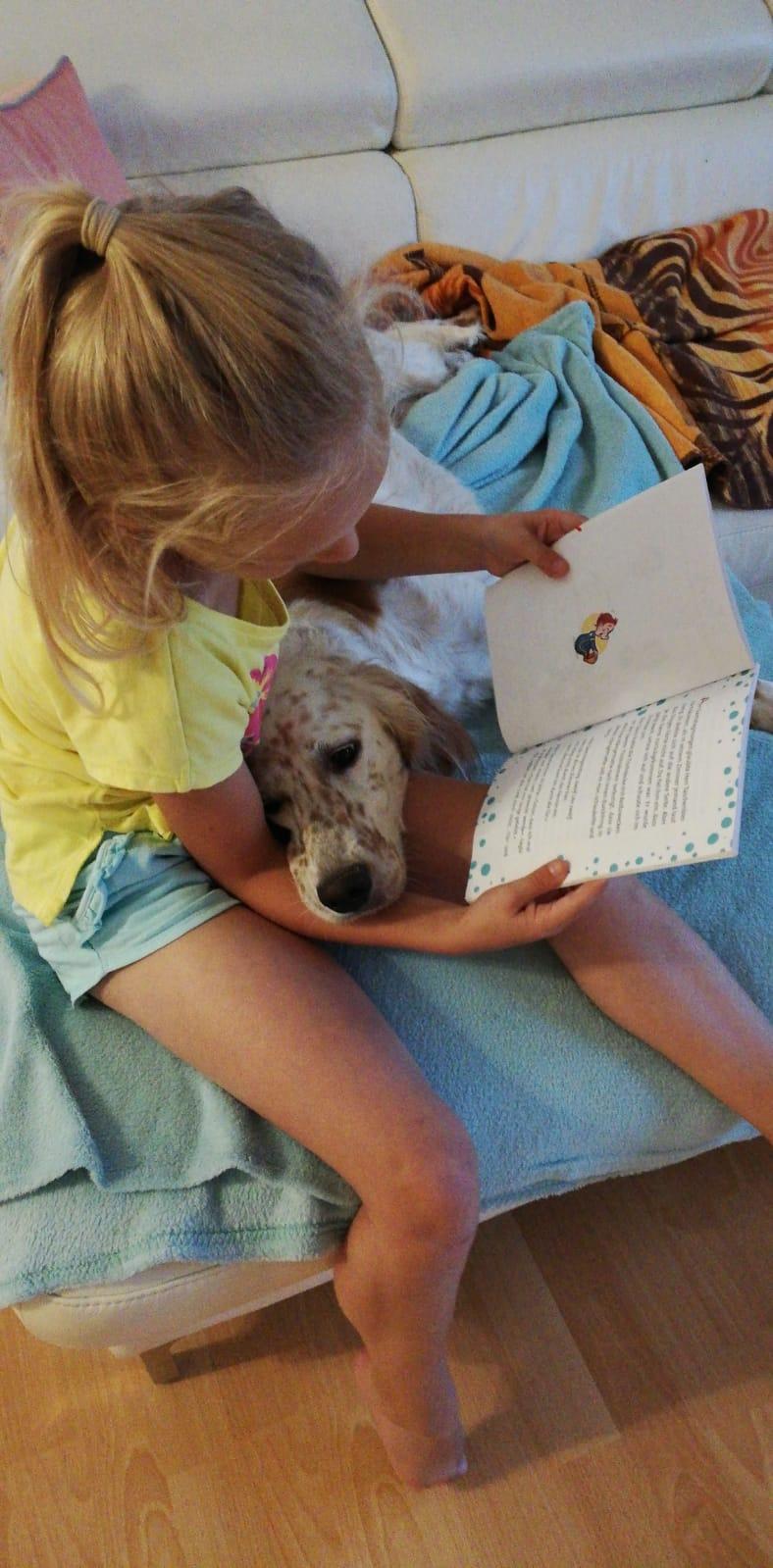 Bildertagebuch - Lotta musste in ihrem kurzen Leben bereits mindestens zweimal ihr Zuhause verlassen - VERMITTELT - 36635804jx