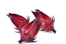 Hibiscus Sabdaria Callus Extract-Haarverlust/ beauty-exklusiv-cosmetics.de