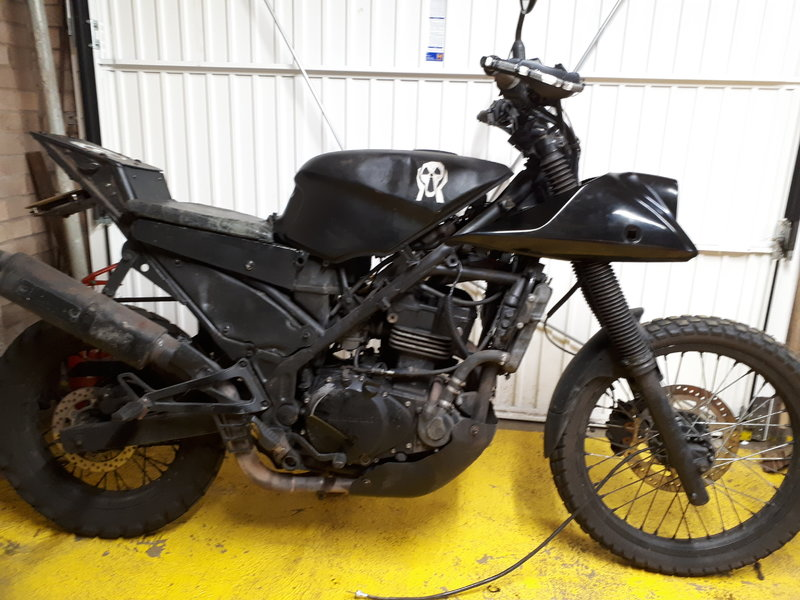 I'm re-styling the front end of my survival bike. Help me weigh up my options.... 38248460mx