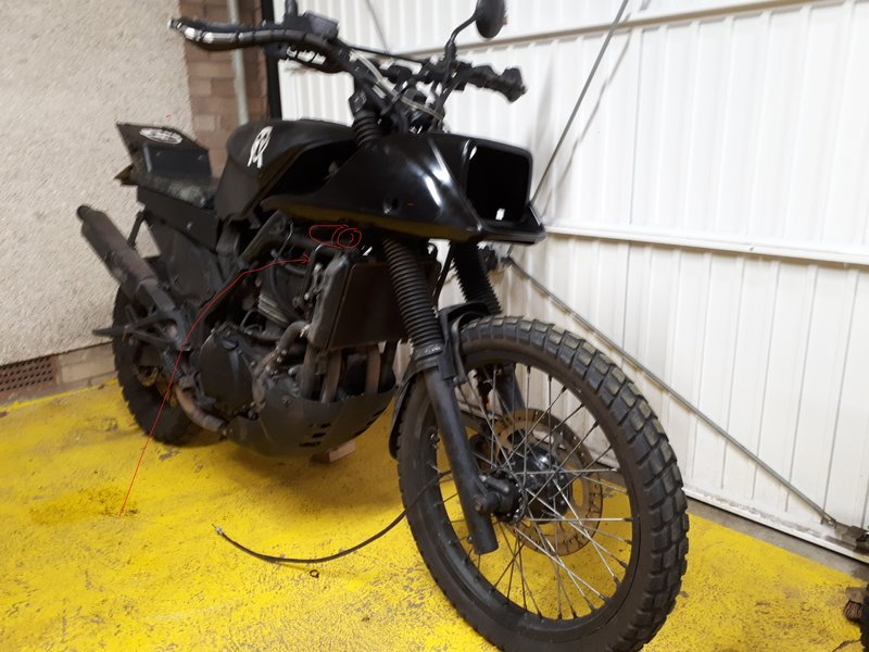 I'm re-styling the front end of my survival bike. Help me weigh up my options.... 38259678ds