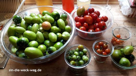 """Tomatenernte und """"Einkochen"""" - TM"""