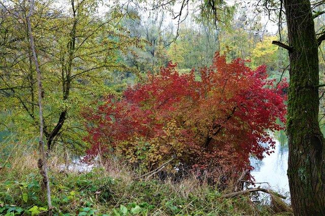 Gedanken über den Herbst 39737774bh