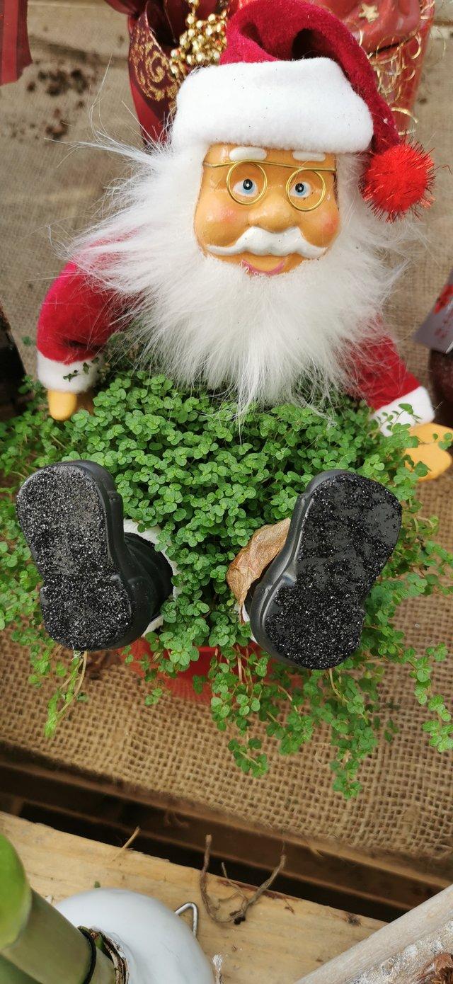Erinnerung an alle - Weihnachten steht bald vor der Tür 39863306sy