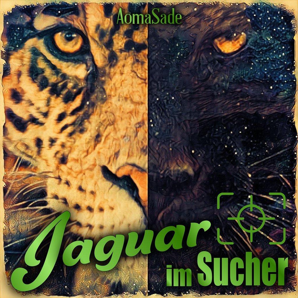 Jaguar im Sucher - Quadrat
