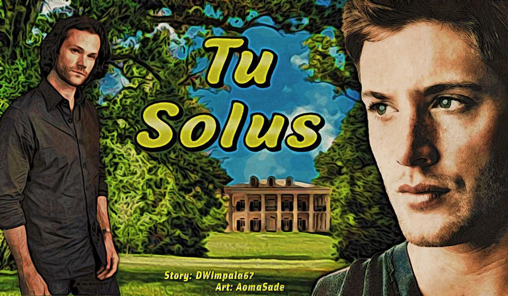 Tu Solus - Banner