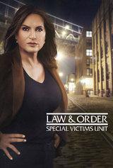 Law & Order - Special Victims Unit Staffel 12 1999 German AC3 microHD x264 - RAIST