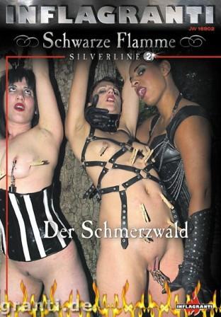Schwarze Flamme - Silverline 02 - Der Schmerzwald
