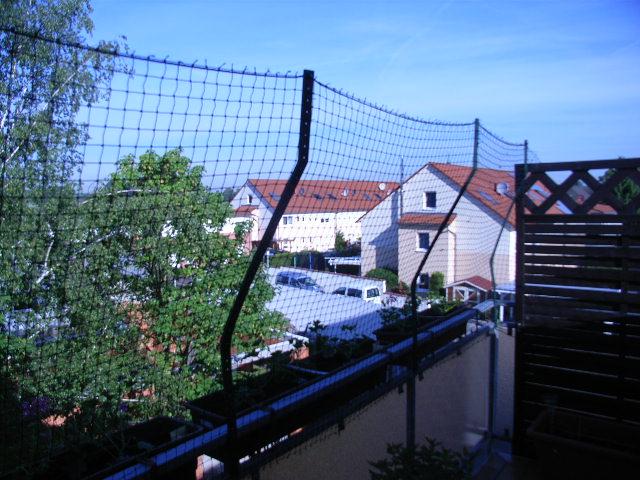 Häufig Balkon Katzensicher machen aber ohne in die Hauswand zu bohren PB63