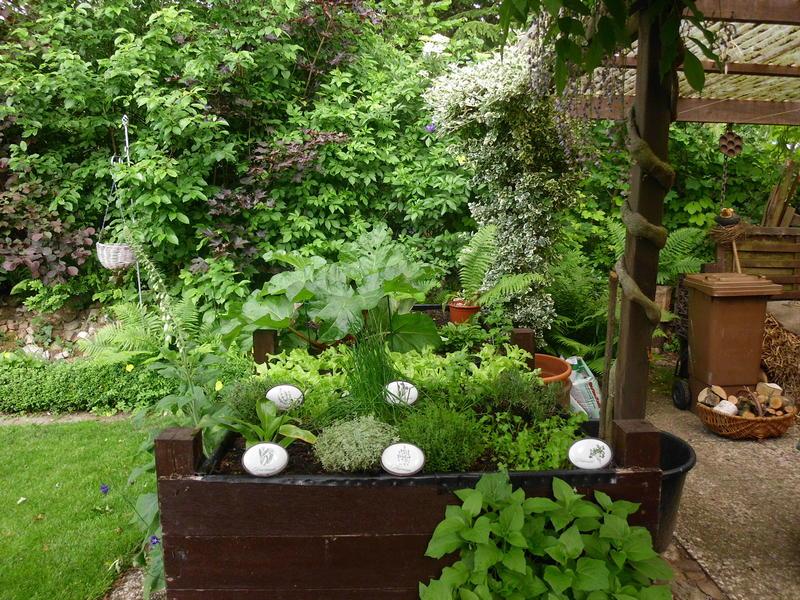 Top Gemüse für Halbschatten - Mein schöner Garten Forum &BT_78